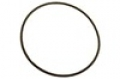 Hayward NorthStar Strainer Cover O-Ring