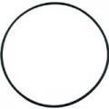 Hayward Housing O-Ring Gasket
