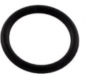 Pentair Drain Plug O-Ring