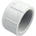 Pentair Drain Cap, 2 in. (1-1/2 in. threads)
