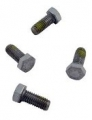 Hayward Motor Cap Screws